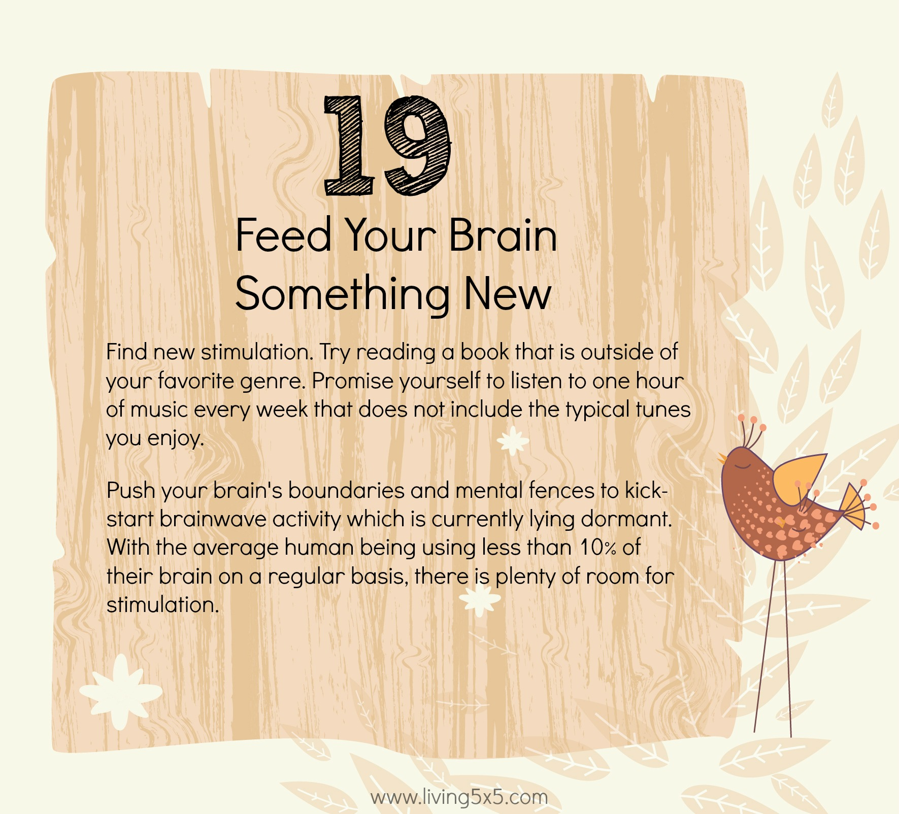 21 Ways To Step Outside Of Your Comfort Zone: #19 Feed your brain something new.