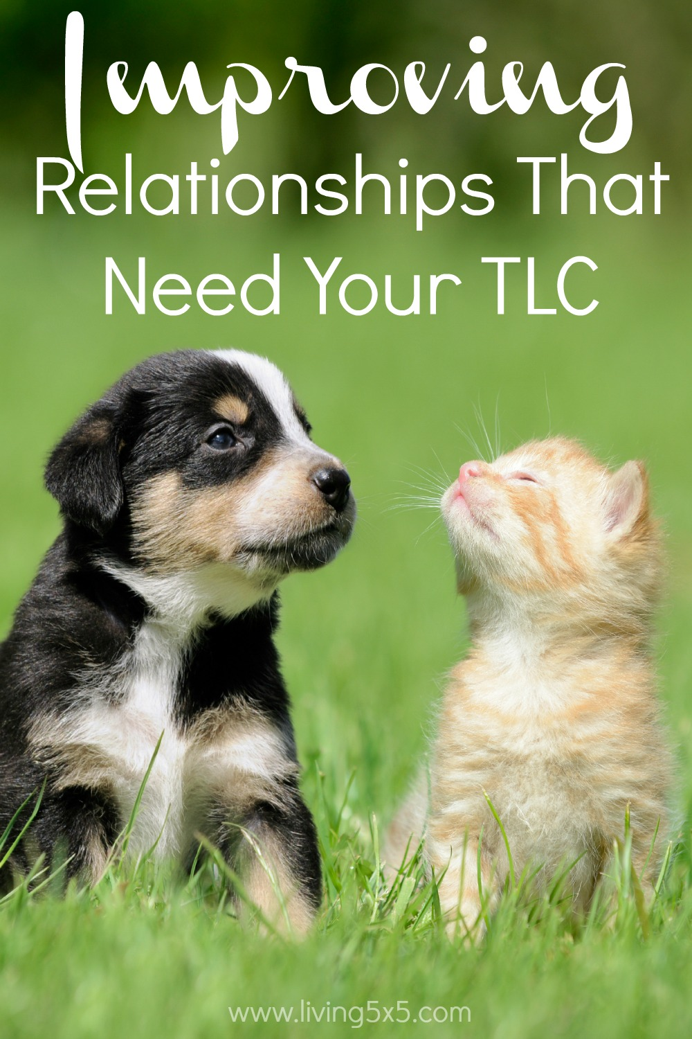 Understand the first steps in your problems and start Improving Relationships That Need Your TLC.