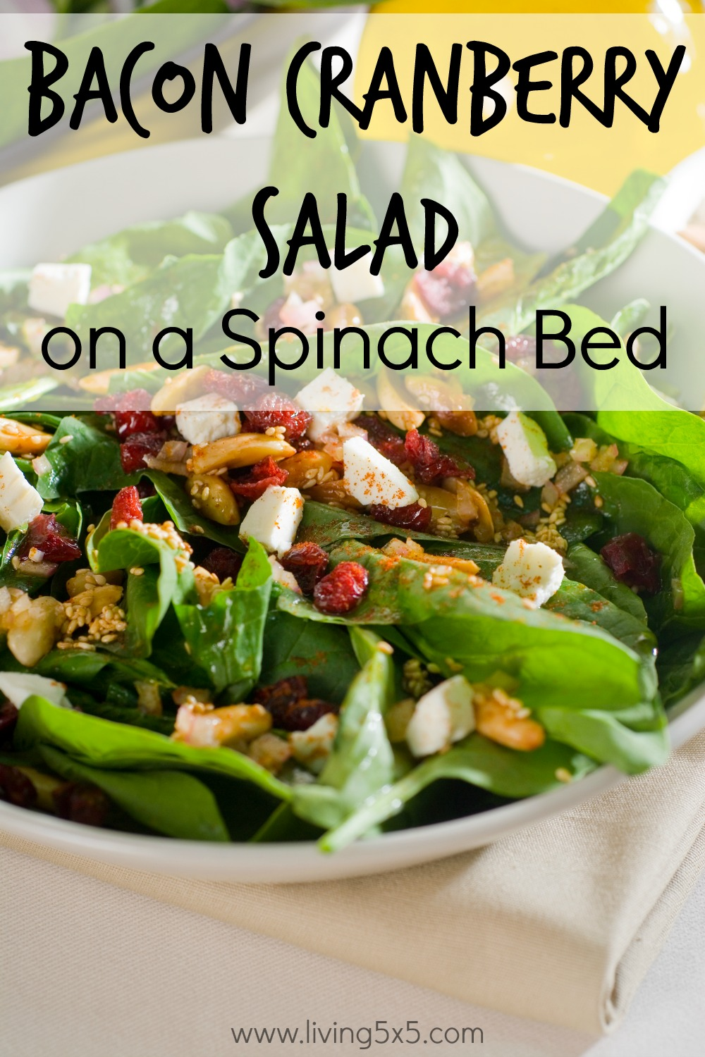 Looking for a sweet and savory salad? Try this Bacon Cranberry Salad on a Spinach Bed!
