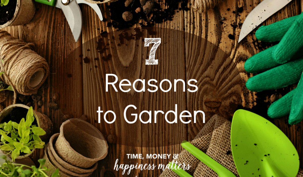 Have you ever considered gardening? You should. It's a very peaceful and therapeutic hobby. I never thought that getting my clothes dirty, hands torn up, and fingernails beyond repair would equate to happiness. Here are my top 7 reasons to garden!