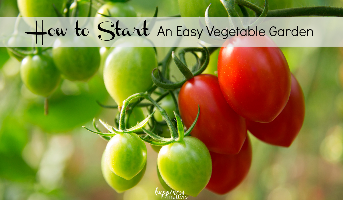 I've been recently asked about how to start an easy vegetable garden. The first few steps are fairly simple as you draw up an approximate plan of where you'd like everything to go, keeping as close to scale as possible.