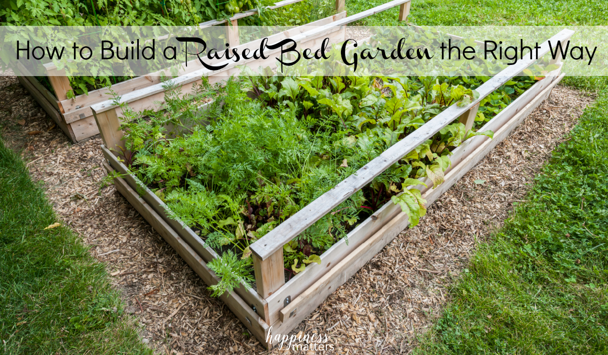 Get the essential steps on How to Build a Raised Bed Garden the Right Way.
